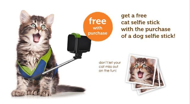 Selfie sticks image (9)